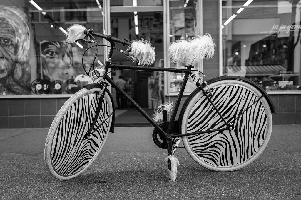 170614-Bike-193235.jpg