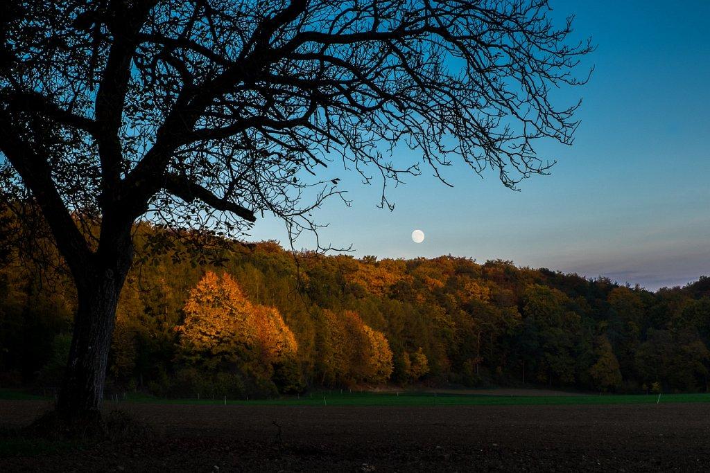 autumn eve