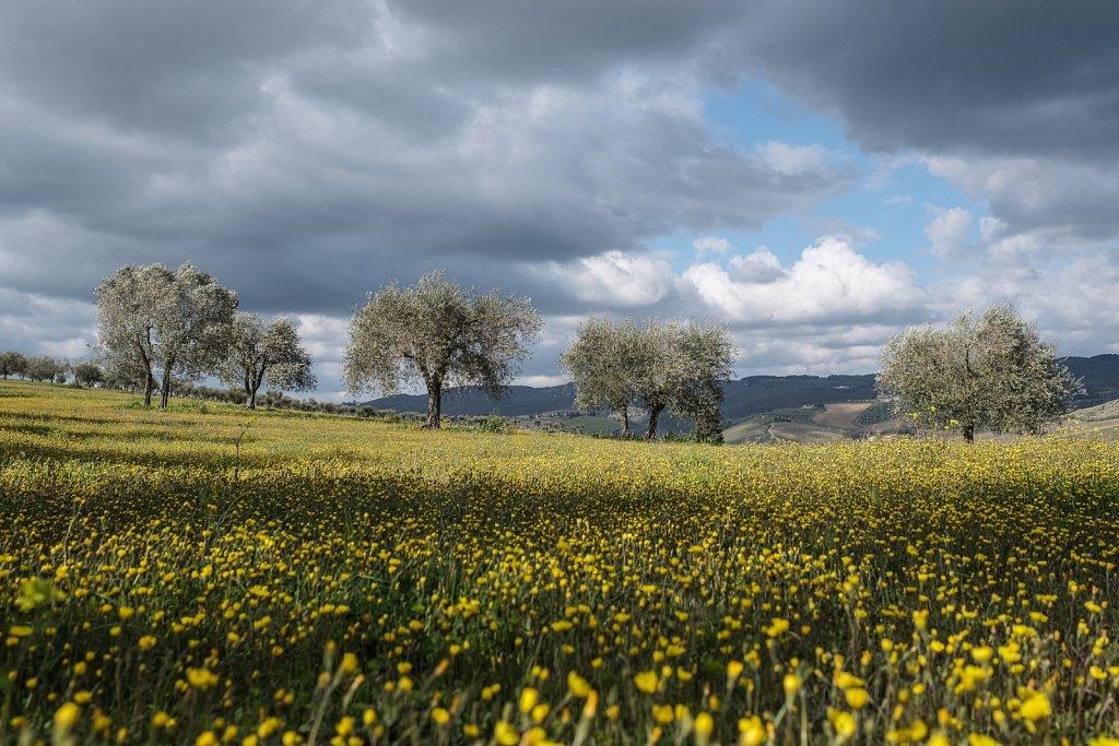 180405-Toscana-164948.jpg