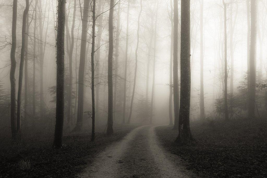 mystic silence